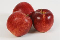 Three apples malus x domestica Stock Photos