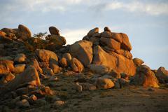 Stock Photo of bizarre rock formations in morning sun bayangobi mongolia
