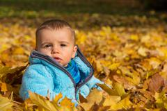 cute little baby boy sitting in the maple leaves. - stock photo