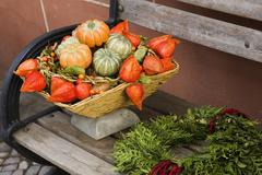 autumn garden decoration pumkins - stock photo