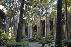 cloister of the cathedral, arcade, convent, barcelona, catalonia, spain - stock photo