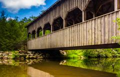 the covered bridge above high falls, in dupont state forest, north carolina. - stock photo