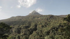 Jungles of Sri-lanka with Adam's Peak Stock Footage