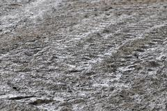 Stock Photo of liquid manure is distributed on field