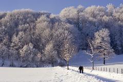 Strollers enjoy the winter fairytale at the peilstein hill lower austria Stock Photos