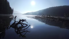 Landscape mountain lake with fallen trees in the water and the morning sun Stock Footage