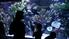 Tourists in the aquarium Antalya, Turkey 7 Stock Footage