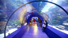 Tourists in the aquarium Antalya, Turkey 5 Stock Footage