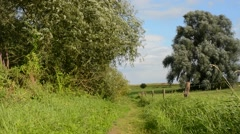Trail through beautiful countryside Stock Footage
