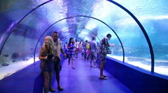 Tourists in the aquarium Antalya, Turkey 1 Stock Footage