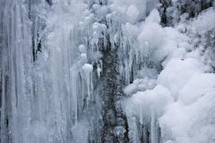 Ice formations along a stream in steinwandklamm ravine, lower austria, austri Stock Photos