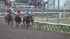 Bred Horse Race Derby - 21 Stock Footage