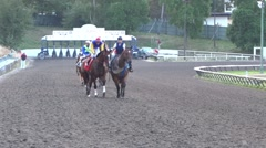 Bred Horse Race Derby - 20 - stock footage