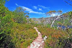 Cradle Mountain National Park, Tasmania, Australia Stock Photos