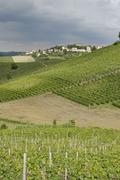 hilly countryside between asti and alba langhe piedmont piemonte italy - stock photo