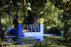Blue terrace at pond hidden in green plants in the garden jardin majorelle ma Kuvituskuvat