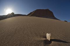 Salt crystal on a sand dune in the valle de la muerte (death valley or someti Kuvituskuvat