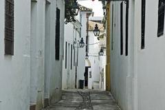 alleyway in cordoba, andalusia, cordoba, spain, europe - stock photo