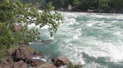 Rushing rapids with rocks and foliage Stock Footage