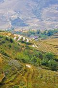 terraces of rice in the north of vietnam, asia - stock photo