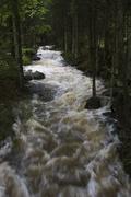 Kleine ohe river, nationalpark bayrischer wald (bavarian forest national park Stock Photos