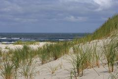 Stock Photo of sand dune with view of the north sea, juist island, lower saxony, germany, eu