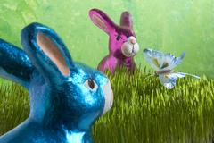 osterhase meets osterhasen and butterfly in grass - stock photo