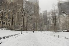Snow covered road in Central Park, Manhattan , New York City Kuvituskuvat