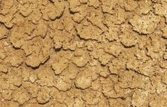 desiccated mud - stock photo