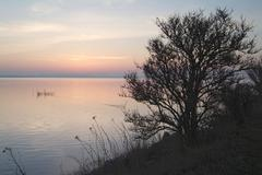 Stock Photo of sundown, island of moen, baltic sea, danmark