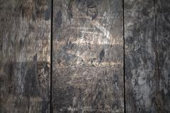 wooden planks in variation of colors - stock photo