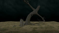 The lonely place tree and tombstone fly-around 1080 Stock Footage