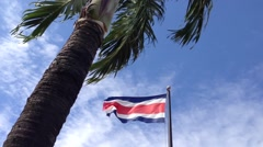 Palmtree with Costa Rican flag Stock Footage