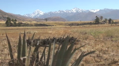 Peru mountains behind dry pasture from moving car Stock Footage