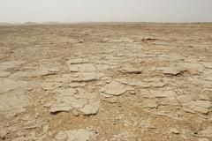 desiccated ground in desert - stock photo
