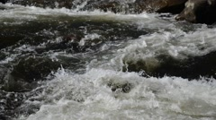 Water running in flowing stream / river Stock Footage
