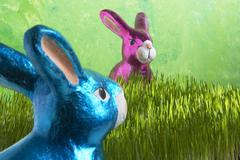 easter bunny meets easter bunny - stock photo