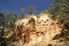 Stock Photo of red cliffs with eucalyptus trees and pine trees, paringa, riverland, south au