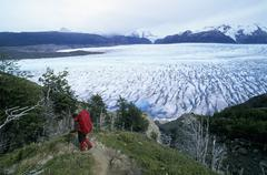 hiking over glaciar grey in torres del paine national park chile - stock photo
