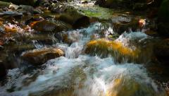 Mountain stream in the forest Stock Footage