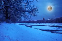 hoarfrost on a winter night - stock photo