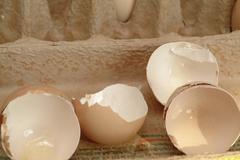 eierschale, food, eier, ei, schale / egg eggs - stock photo