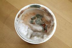 Mildew yoghurt Stock Photos