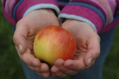 Kinderhand mit apfel / aplle in child hand Stock Photos