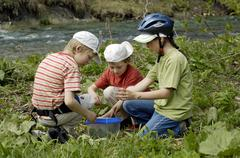 three children seven eight and nine year old collecting beetles and insects - stock photo