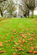 kilcrea, ireland - november 28: kilcrea friary on november 28, 2012 in co.cor - stock photo