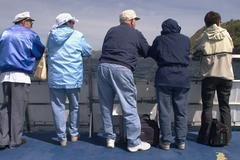 Stock Photo of tourists on a whale watching boat, whitless bay, avalon peninsula