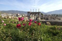 Turkey selcuk near ephesuschurch of s. john johannes on the ayasoluk hill abo Stock Photos