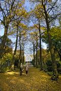 Path on the East Cemetery in Munich Bavaria Germany Stock Photos