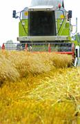 A combine harvester harvesting crops - frontview Stock Photos